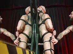 Bound sex slave was whipped and fucked