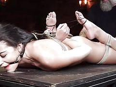 Brutally whipped while hanging upside down
