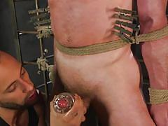 bondage cage, bdsm, torture, vibrator, handjob, rope bondage, blindfolded, threesome, blowjob, clothespins, mouth gag, men on edge, kink men, donnie argento