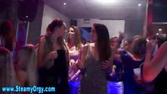 Amateur party fuck and the bets dick suck ever pov