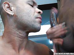 Sexy shemale gets her cock deepthroated