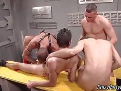 Cock loving studs in hot orgy session