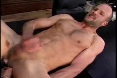 anal, bisexuals, strapon