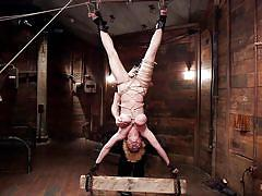milf, blonde, spanking, big tits, torture, hanging, tied, upside down, rope bondage, hogtied, kink, darling