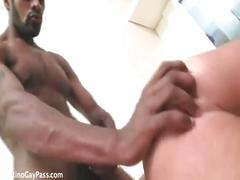 Two monster black cocks for latin ass