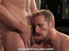 Shameless muscled bears morgan black and billy berlin anal fuck