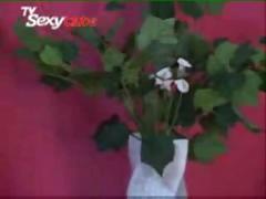 Angelica ramos  e  camila carvalho.