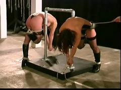 Two slaves training part-1