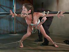 milf, bondage, bdsm, latina, brunette, tied up, ropes, clamps, mouth gagged, metal pole, sadistic rope, kink, felony