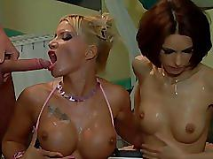 orgy, hardcore, pornstar, blonde, brunette, big-tits, extreme, double-anal, facial, milf, ass-fuck, tit-fuck, doggy-style, hungarian