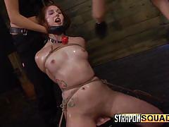 threesome, babe, redhead, rough sex, strap on, domination, fingering, rope bondage, strapon squad, fetish network, rose red, lexy villa, brooklyn daniels
