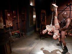 anal, bdsm, babe, ebony, hanging, deepthroat, vibrator, rope bondage, sex dungeon, dungeon sex, kink, jack hammerx, lotus lain