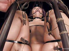 bdsm, torture, vibrator, brunette milf, bondage cage, clamps on pussy, device bondage, kink, orlando, kristina rose