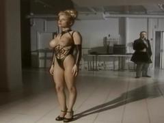 hd videos, hardcore, pornstars, vintage, wild