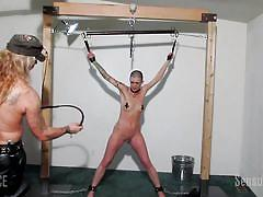 bdsm, babe, torture, whipping, painful, pierced pussy, chains, bald girl, leather straps, sensual pain, abigail dupree, master james