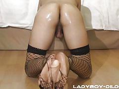 shemale, footjob, asian, solo, masturbation, dildo, ladyboy, fishnets, ladyboy dildo, ladyboy gold, zaza