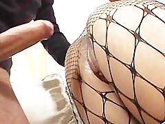 Hottie in fishnet stockings gets fucked