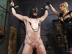 femdom, masked, cock torture, suspended, nipple clamps, blonde mistress, latex costume, rope bondage, tattooed milf, divine bitches, kink, slave fluffy, maitresse madeline marlowe