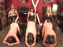 Three mistress with three slave