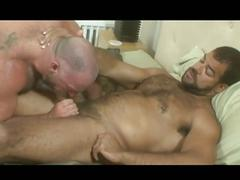 bears, blowjobs, hunks, porn stars, deepthroat, face fucking, hairy men, muscle man, sloppy blowjob, stud