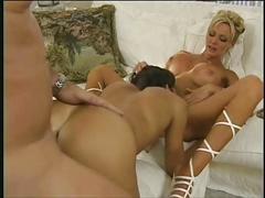 anal, cumshots, pornstars