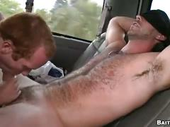 Hairy muscled bear tricked in bait bus