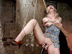 small tits, blonde, bondage, vibrator, tied up, executor, tits groping, hogtied, kink, ella nova
