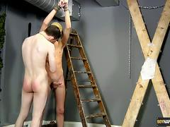 Kinky twinks in erotic bondage suck