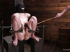 bdsm, babe, whipping, blindfolded, metal bondage, twig, device bondage, kink, the pope, ashley lane