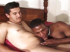 Interracial ass pumping guy takes this hot black