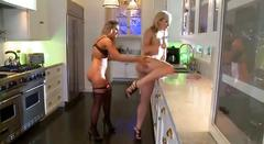 Teagan presley and alexis texas toying in the kitchen