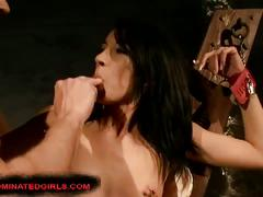 Hot cute brunette forced to take huge cock after torture