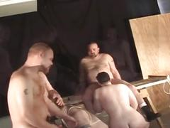 Nasty greasy fat studs tied up for some gang ass stretching fun