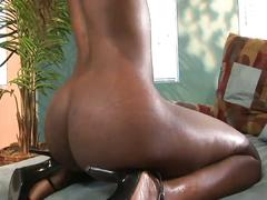 Awesome ebony fuck by a big black dicks.