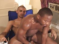 Black stud sucks and gets fucked