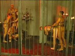 anal, bdsm & fetish, big cocks, group sex, hardcore, hunks, orgy, porn stars, assfucking, bondage, leather, muscle man, stud