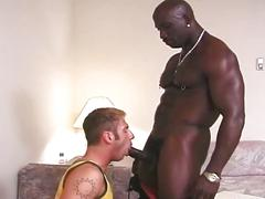 Beefy black stud gets cock sucked and fucked by white dude