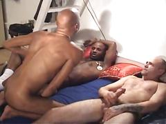 Black studs have hot interracial threesome