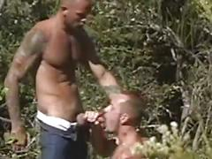 anal, big cocks, blowjobs, cumshots, hardcore, hunks, jerking, public sex, assfucking, big dick, cum in mouth, cum-eating, deepthroat, facial, fucking, handjob, hung, muscle man, stud, sucking