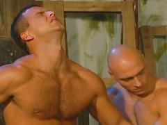 anal, group sex, hardcore, hunks, orgy, porn stars, ass to mouth, assfucking, muscle man, rimming, stud