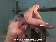 Hairy muscled hotties bruno knight and ben brown hardcore anal