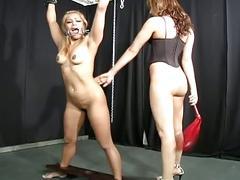 Horny slut tortured a bondage slut !