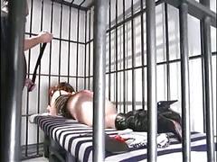 milfs, redheads, spanking