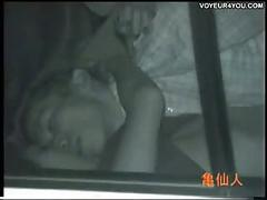 Voyeur car sexual intercourse