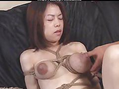 Bond tits lactation and breastfeading by spyro1958 bdsm bondage slave femdom domination