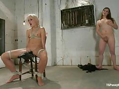 small tits, bdsm, jerking, skinny blonde, kissing, vibrator, moaning, tied up, ropes, on chair, brunette shemale, dylan ryan, tiffany starr, ts pussy hunters, kinky dollars