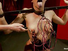threesome, bdsm, domination, stockings, blowjob, white slave, chained, blonde babe, electrodes, bailey blue, mark wood, maitresse madeline, electro sluts, kinky dollars