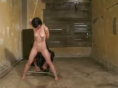 Hogtied suspended bdsm sub gets toy