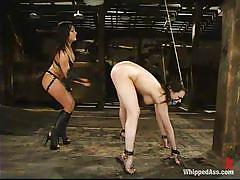 lesbian domination, fuck from behind, pierced pussy, shaved vagina, ass slapping, ball gag, dana dearmond, sandra romain, whipped ass, kinky dollars
