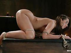 Mistress isi s trains her dirty little cow slut kelly